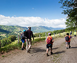 Nature'all adventure-Monts du Cantal ( Massif Central) 7 jours