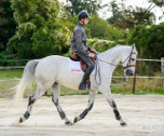 Full Equitation-Saint-Germain-en-Laye ( Ile de France et Centre) 4 jours