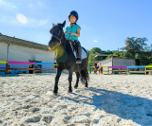 Full Equitation poney-Saint-Germain-en-Laye ( Ile de France et Centre) 7 jours
