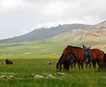 Mongol'Trot- Mongolie( Asie) 15 jours